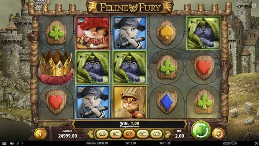 Feline Fury slot by Play'N Go: One of the best slots to play in October 2020.